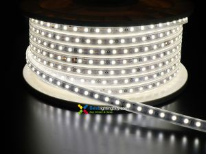 164Ft 120V AC Driverless Waterproof  5050 Flexible LED Strip, 3000K/6000K White Available