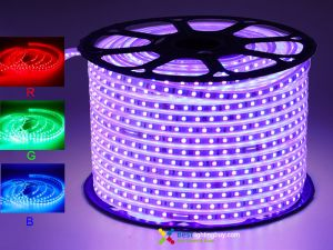 164Ft 120V AC Driverless Waterproof RGB Color Changing 5050 LED Strip