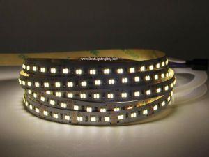 2 in 1 Tunable White CCT 5050 LED Strip Light, 5m, 12VDC