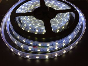 385nm Ultra Violet  SMD5050 Flexible LED Strip, 60LEDs/M, 12VDC