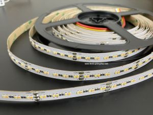 CRI 95 Dynamic White 2216 LED Strip Light, 240 LEDs/m, 24V, 5m
