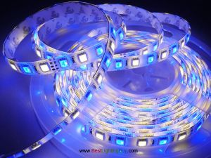 RGB + Warm White 5050 SMD Flexible LED Strip Light, 60 LED/M, 12V/24V DC, 5M/Reel