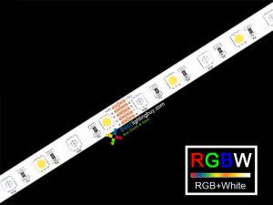 RGB + White 5050 SMD Flexible LED Strip Light, 60 LED/M, 24V DC, 5m