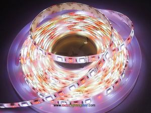 RGB + White 5050 SMD Flexible LED Strip Light, 60 LED/M, 12V/24V DC, 5M/Reel