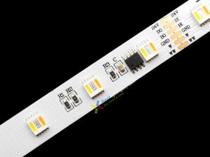 TM1914 Digital 5-in-1 RGB+Dual White 5050  LED Strip, 24V Dual Signal Transmission, 5m